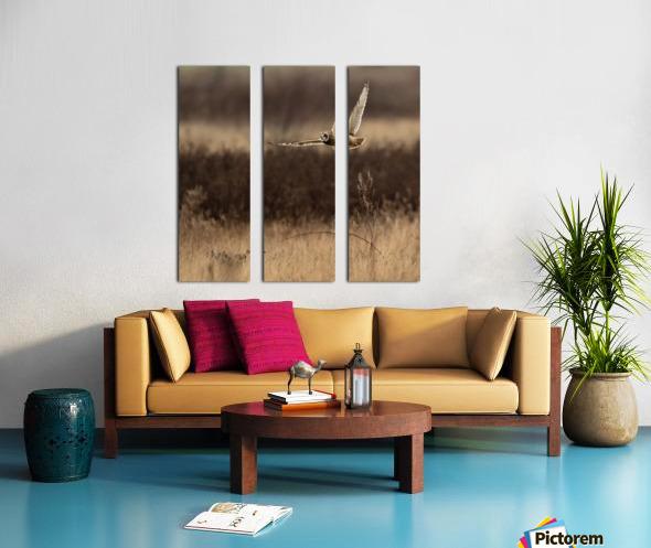 Wesley Allen Shaw 02250 Split Canvas print
