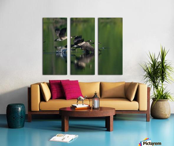 Wesley Allen Shaw 01788 Split Canvas print