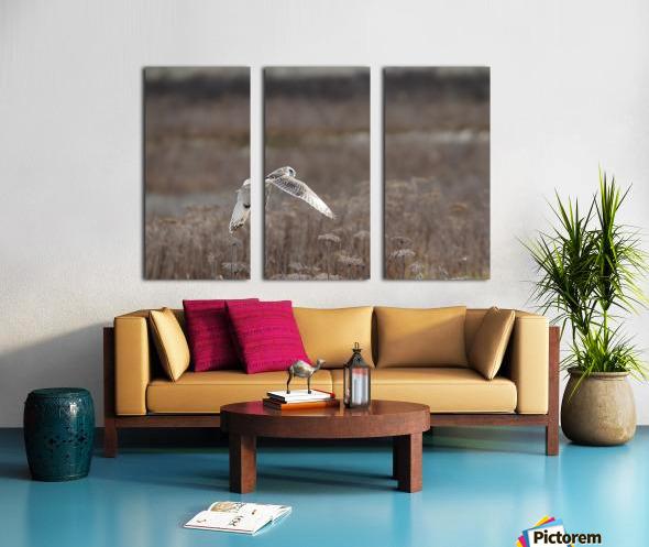 Wesley Allen Shaw 02353 Split Canvas print