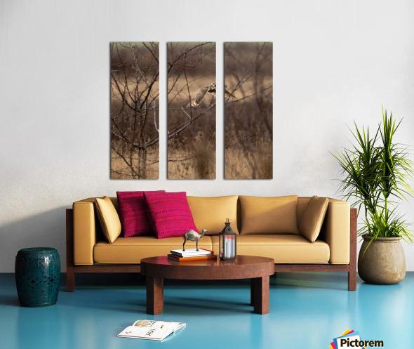Wesley Allen Shaw 02117 Split Canvas print
