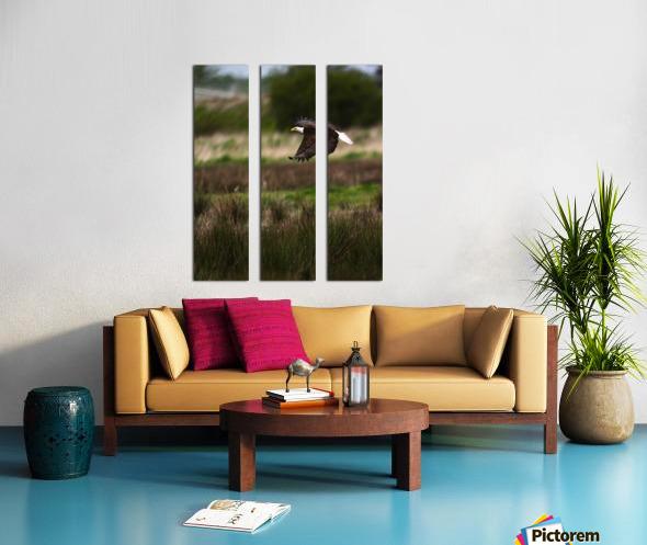 Wesley Allen Shaw 04650 Split Canvas print