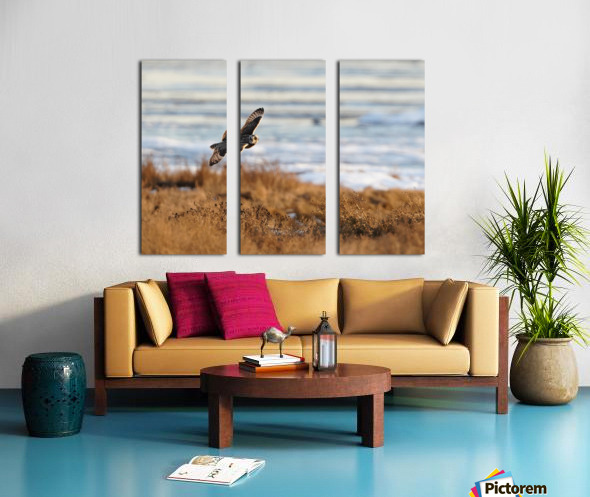 Wesley Allen Shaw 04091 Split Canvas print