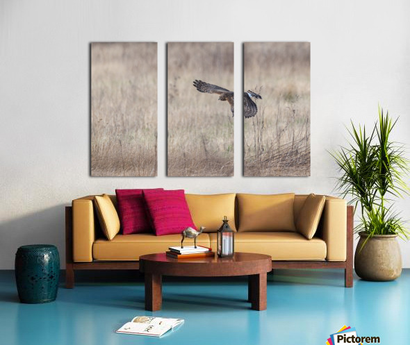Wesley Allen Shaw 09335 Split Canvas print