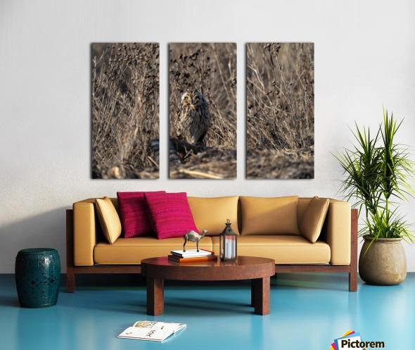 Wesley Allen Shaw 09496 Split Canvas print