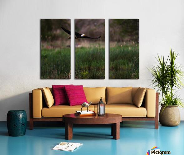 Wesley Allen Shaw 04576 Split Canvas print