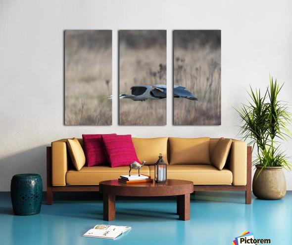 Wesley Allen Shaw 09384 Split Canvas print