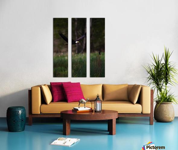 Wesley Allen Shaw 04579 Split Canvas print