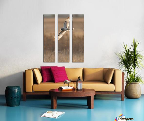 Wesley Allen Shaw 08970 Split Canvas print