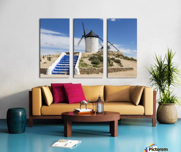 IMG 8247 Split Canvas print