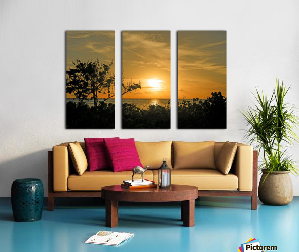 Delicate Split Canvas print