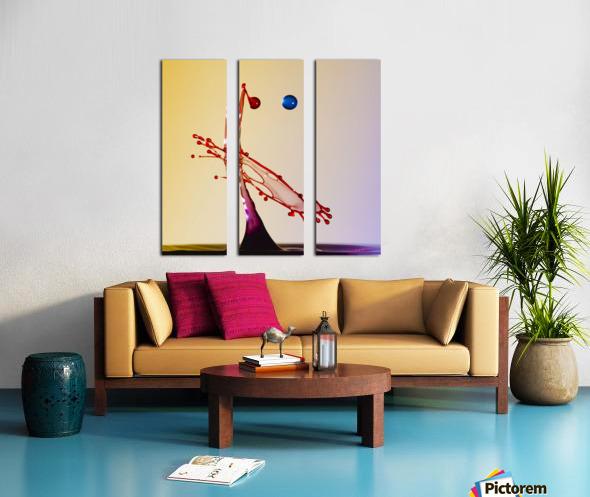 MG 1635  Split Canvas print