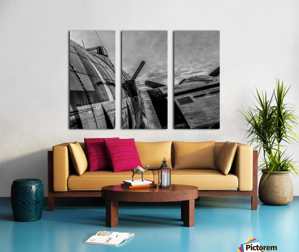 Over The Wing Split Canvas print