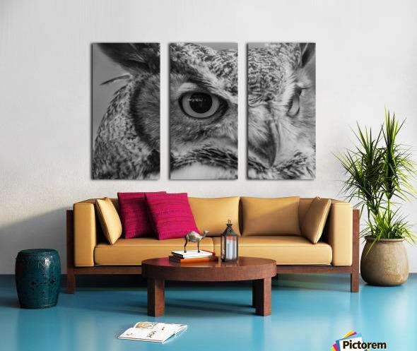 20181021 DSC 0228  2  1 2 Split Canvas print