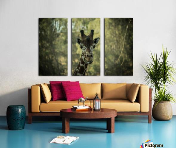 20181104 DSC 0164  3  Split Canvas print