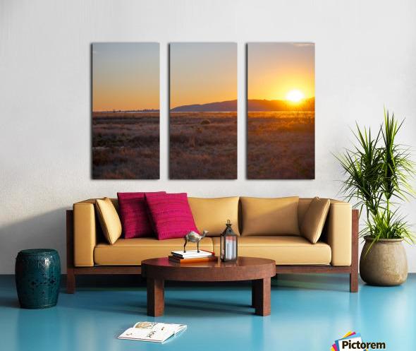 20190101 DSC 0140 4 Split Canvas print