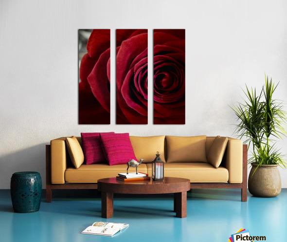 20181209 IMG 2798 1610470253.4238 Split Canvas print