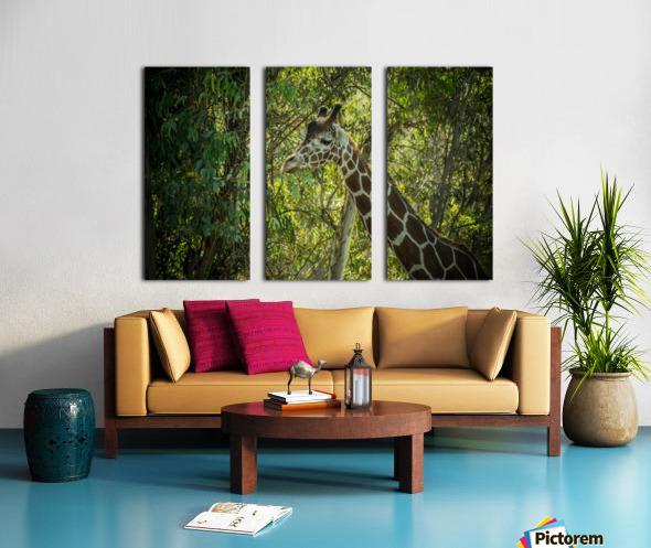 20181104 DSC 0202  3  Split Canvas print