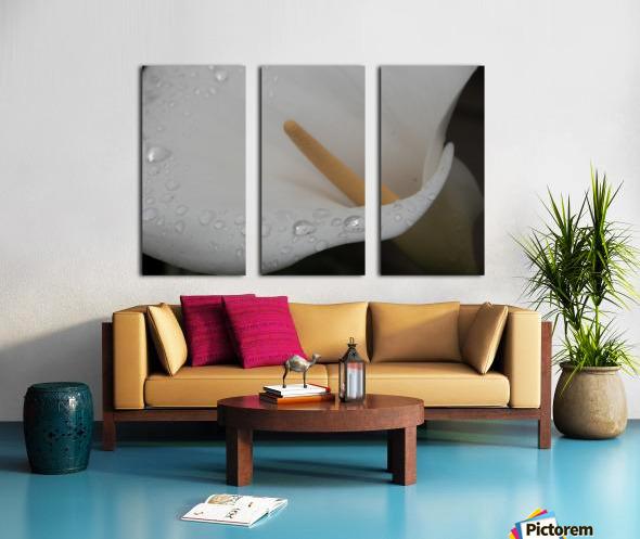 20200314 DSC 0071 Split Canvas print