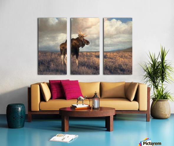 20201101  DSC4194 txtr Split Canvas print