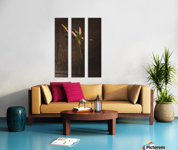 Etude Zen 3i Split Canvas print