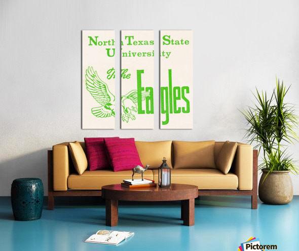 Vintage North Texas State University Eagles Art Split Canvas print