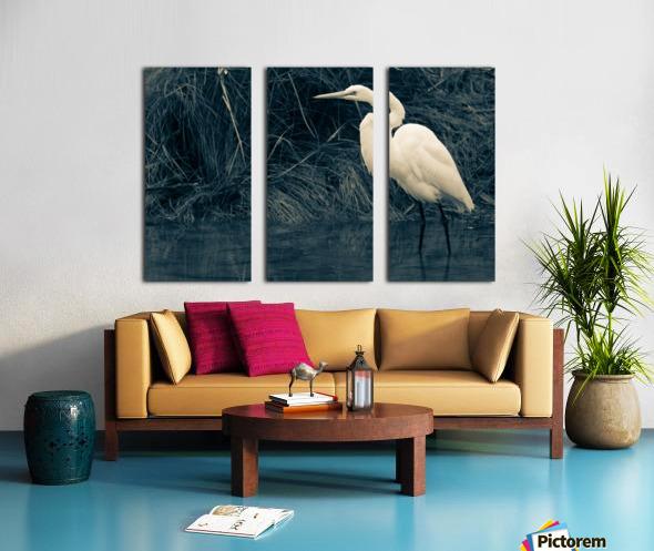 Great White Egret ap 1839 B&W Split Canvas print