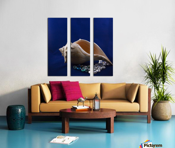 Single Conch Shell With Colored Glass  Split Canvas print