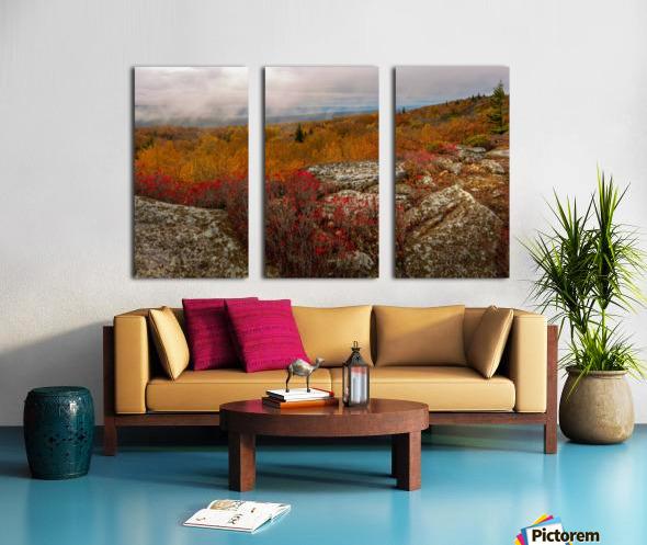 Colors of Nature apmi 1795 Split Canvas print