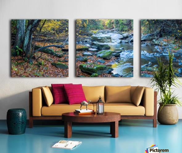 Cowanshannock Creek apmi 1982 Split Canvas print