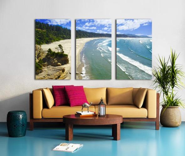 Wild Oregon Coast Split Canvas print