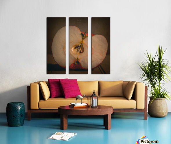 Etude Zen 7d Split Canvas print