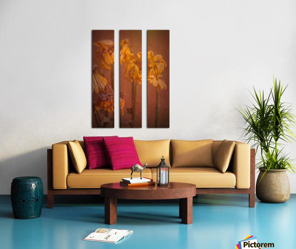 Etude Zen 7 p Split Canvas print
