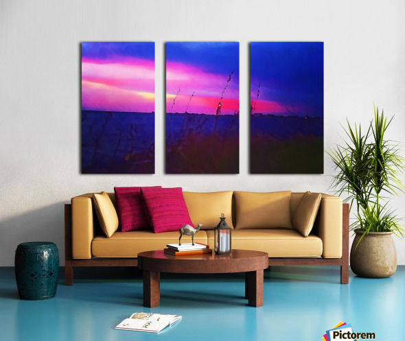 Burst of Pink Split Canvas print