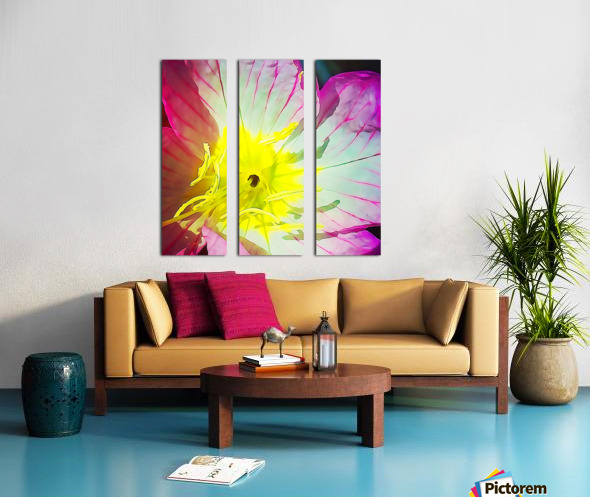 Flower Close Up Split Canvas print