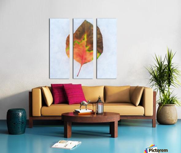 snow leaf Split Canvas print