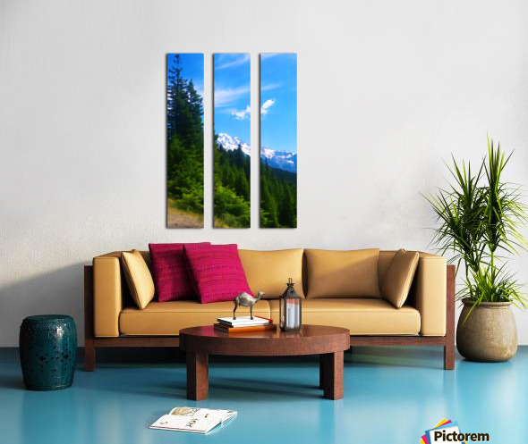 washington state mountains Split Canvas print