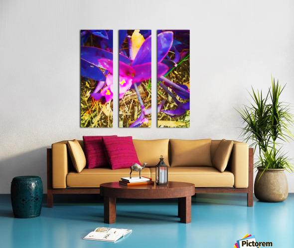 pink and purple Split Canvas print