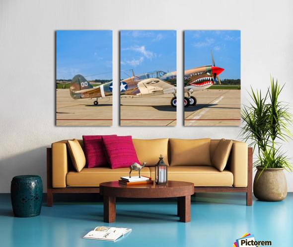 P 40 Warhawk Split Canvas print