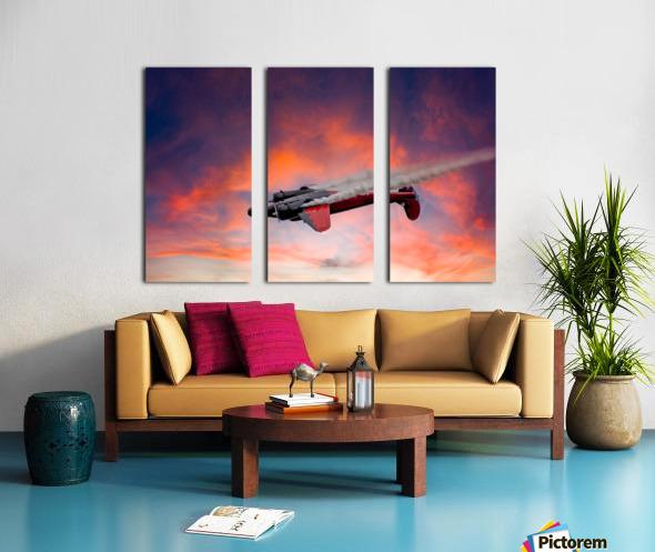 Beech B18 Inverted Flight Split Canvas print
