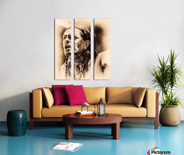 Native American 15 Split Canvas print