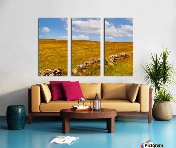 Donegal 24 Split Canvas print