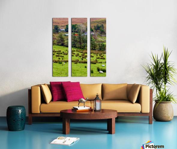 Donegal 7 Split Canvas print