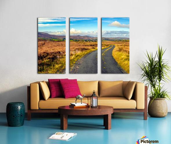 Donegal 11 Split Canvas print