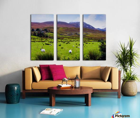 Donegal 10 Split Canvas print