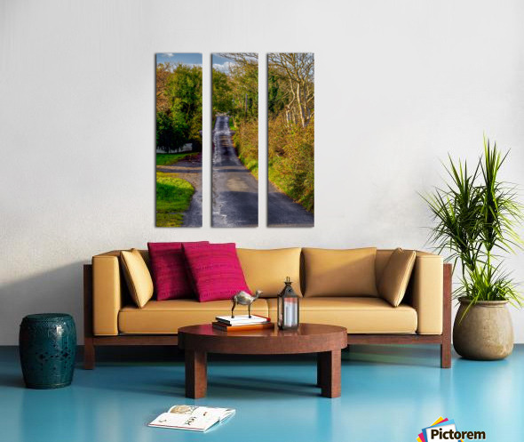 Donegal Byway Split Canvas print