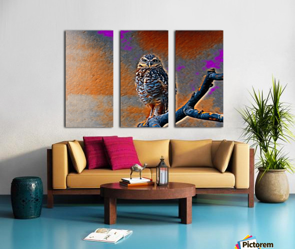 OWL - Stylized Split Canvas print