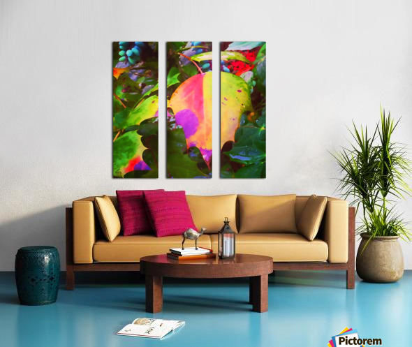 Color Burst Split Canvas print