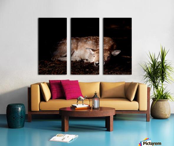 Fallow Deer 2 Split Canvas print