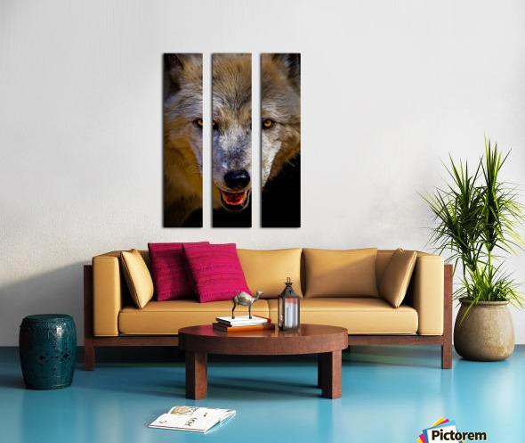 Wolf 2 Split Canvas print