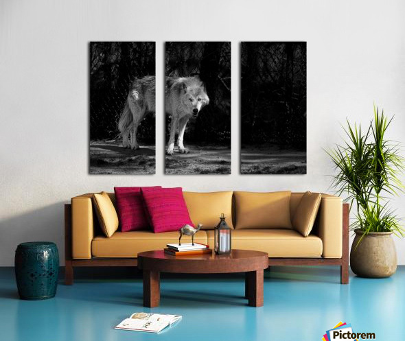 Wolf 1 Split Canvas print